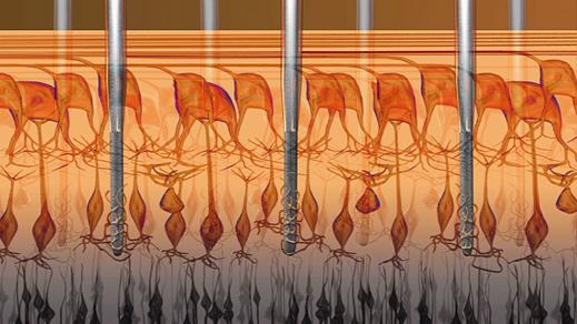 nanowire.retinax519